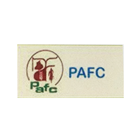 PAFC Company Logo with Skin colour in the background